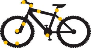 Puces sur vélo